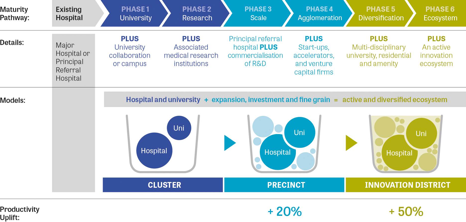 Figure 17: Maturity pathway for health and education precincts.