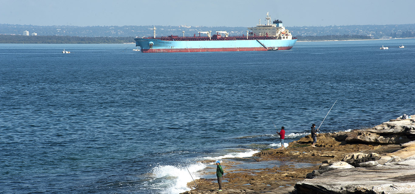 Photo of a container ship in Botany Bay.